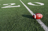 American Football near the Twenty — Stock Photo