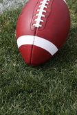 Futbol amerykański na trawie — Zdjęcie stockowe