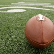 Stock Photo: Football with Twenty Yard Line Beyond