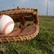 Stock Photo: Baseball in Glove