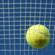 Tennis Ball on Racket Strings — Stock Photo