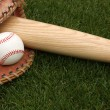 Stock Photo: Baseball & Bat on Grass