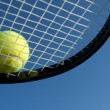 Tennis Ball on a Racket - 图库照片