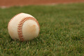 Baseball on the Grass — Stockfoto