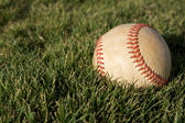 Baseball on the Outfield Grass — Stock Photo