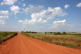 Old Red Dirt Road — Stock Photo