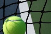 Tennis Ball against the net — Stock Photo