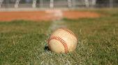 Baseball in the Grass — Stock Photo
