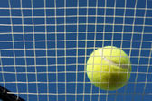 Tennis Ball on Racket Strings — Foto Stock