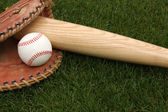 Baseball & Bat on the Grass — Stock Photo
