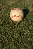 Baseball on Outfield Grass — Stock Photo