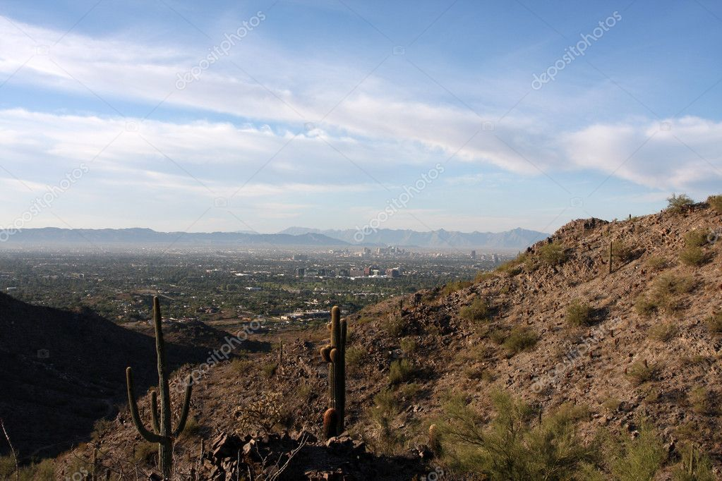Cactus in the Arizona Desert near with Phoenix off in the distance — Stock Photo #6923703
