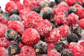 The frozen berries — Stock Photo