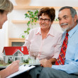 Senior couple discussing with consultant — Stock Photo