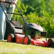 Lawn mower at work — Stock Photo