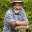 Senior gardener - Stock Photo