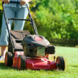 Lawn mower at work - Stock Photo