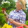Portrait of pretty senior woman gardening — Stock Photo #6844193