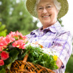 Gardening — Stock Photo #6844361