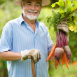 Senior gardener — Stock Photo #6845061