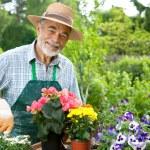 Gardening — Stock Photo #6845077