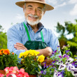 Portrait of senior man gardening — Stock Photo #6845166