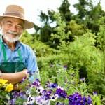 Gardening — Stock Photo #6845220