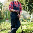 Senior gardener — Stock Photo #6845625