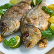Baked gilthead — Stock Photo #6856939