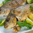Baked gilthead — Stock Photo