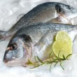 Stock Photo: Gilt-head bream on ice