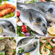 Seafood Collage — Stock Photo #6857161