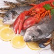Sea food — Stock Photo #6857212