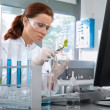 Stock Photo: Scientist working at laboratory