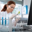 Stock Photo: Scientist working at the laboratory