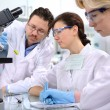 Laboratory — Stock Photo #6857736