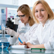 Group of the students working at the laboratory - Stockfoto