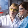 Working in laboratory — Stock Photo #6859467