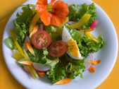 Fresh garden salad with — Stock Photo