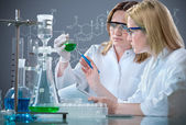 Group of the students working at the laboratory — Stock Photo