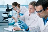 Laboratory — Stock Photo