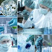 Laboratorium collage — Stockfoto