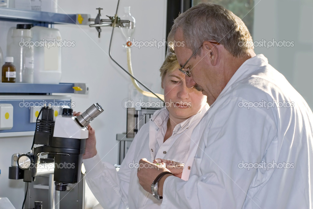 Two science technicians survey the results of their experiments  — Stock Photo #6859268