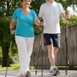 Nordic walking — Stock Photo #6860873