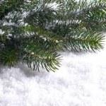 quadro de Natal — Foto Stock