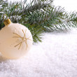 Christmas decoration — Stock Photo #6861605