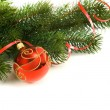 Christmas decoration — Stock Photo #6861785