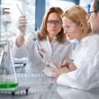 Group of the students working at the laboratory — Stockfoto