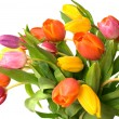 Bouquet of the fresh tulips — Stock Photo #6863359