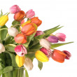Bouquet of the fresh tulips — Stock Photo #6863371